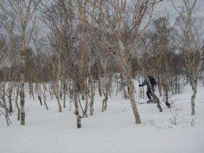 200802azumaya2.jpg