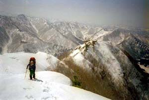 越後の山並を背に登り来る