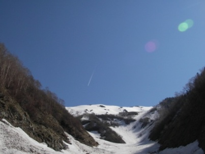 koyaurasawa2.jpg