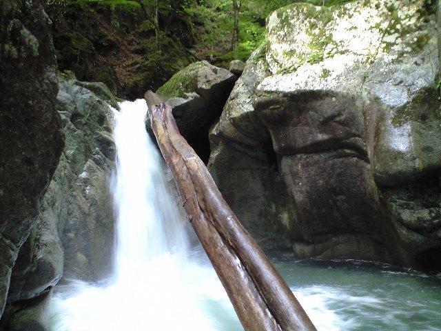 F1:倒木のかかった滝