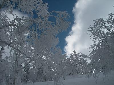 2010-01-30 13-22-39_00241.jpg