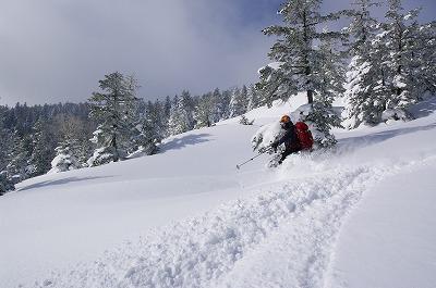 skier001