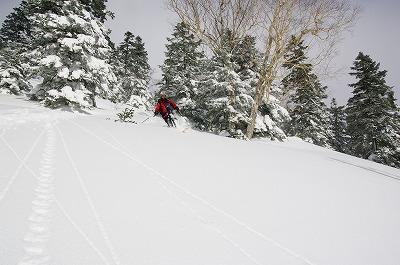skier002