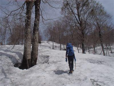 快適な雪の尾根